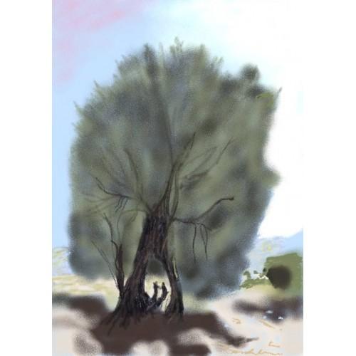 olivetree_v2-500x500.jpg